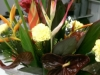 Tropical Hand Tied Sympathy tribute