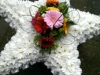 Star made from flowers
