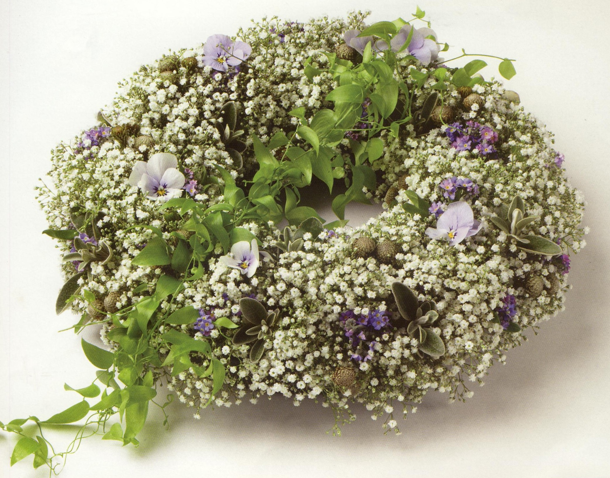 gypsophila and violets funeral wreath 14""